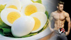 proteínas del huevo