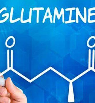 como tomar glutamina