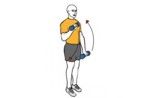 curl de biceps en pronacion