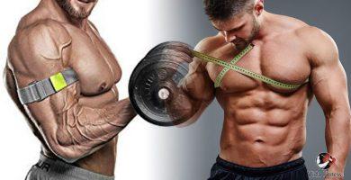 rutina de pecho y bíceps