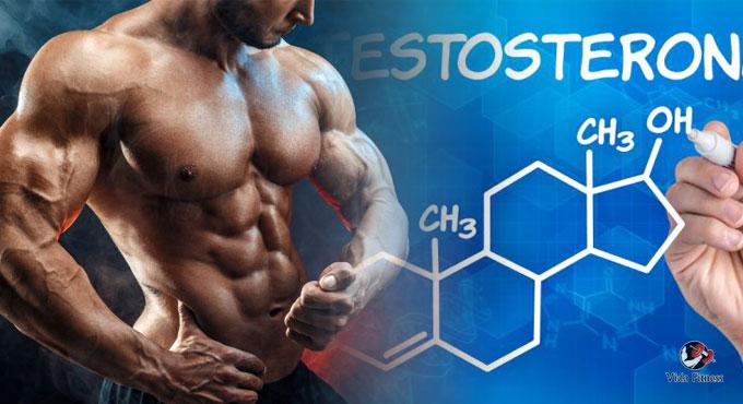 razones del por que aumentar la testosterona