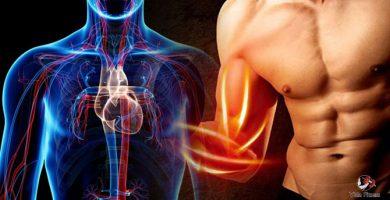 beneficios del oxido nítrico