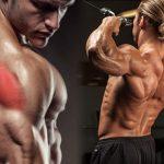 ejercicios para deltoides posteriores