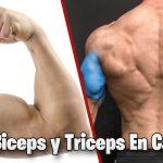 Ejercicios Para Bíceps y Tríceps En Casa