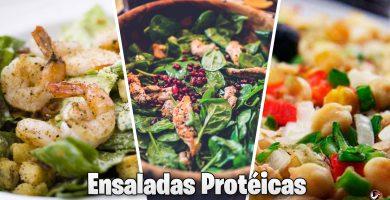 Recetas De Ensaladas Proteicas
