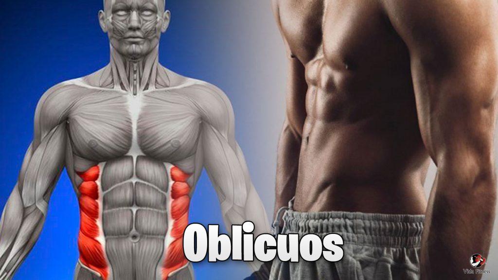 importancia de entrenar oblicuos
