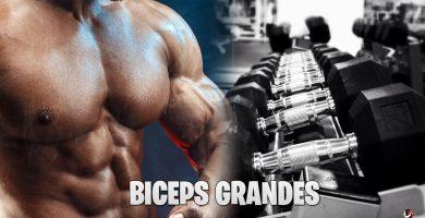 Consejos Para Hacer Crecer Tus Bíceps
